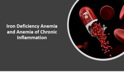 Iron Deficiency Anemia and Anemia of Chronic Inflammation