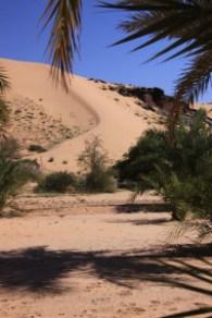 agueny-2010_nedjet_oasis-dunes-01