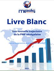 FICHE SYNAPTIQUE- LIVRE BLANC MEDS