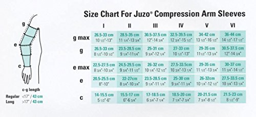 Juzo-2001-Lymphedema-Armsleeve-Dreamsleeve-wSilicone-Band-20-30-mmHg-Max-Reg-JZ2001MXCGRSB-P-0