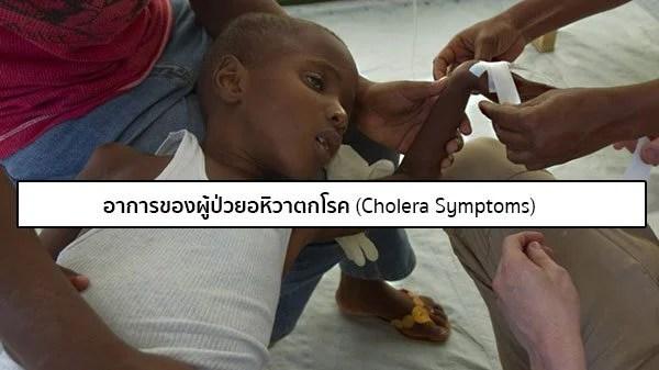 อาการโรคอหิวาตกโรค