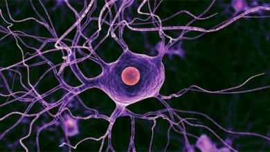 Photo of Що таке глиоз головного мозку?