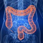 Photo of Чим лікувати розлад кишечника