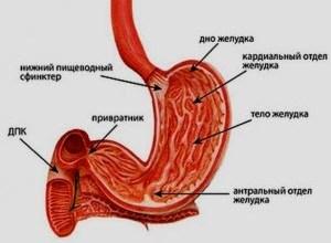 Photo of Промивання шлунка в домашніх умовах