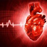 Photo of Чим небезпечна міокардіодистрофія серця