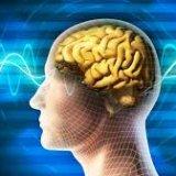 Photo of Що допоможе зміцнити нервову систему людини