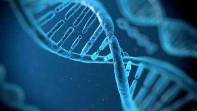 Photo of Гени впливають на лікування від раку