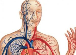 Photo of Чому виникає тромбоз підключичний