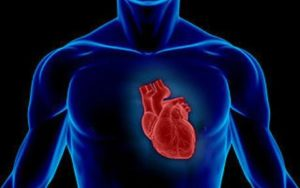 Photo of Небезпечний трансмуральний інфаркт: методи виявлення, терапії і відновлення після