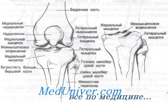 térdízületi kezelés medialis ligamentumának törése ujjízület akut fájdalma
