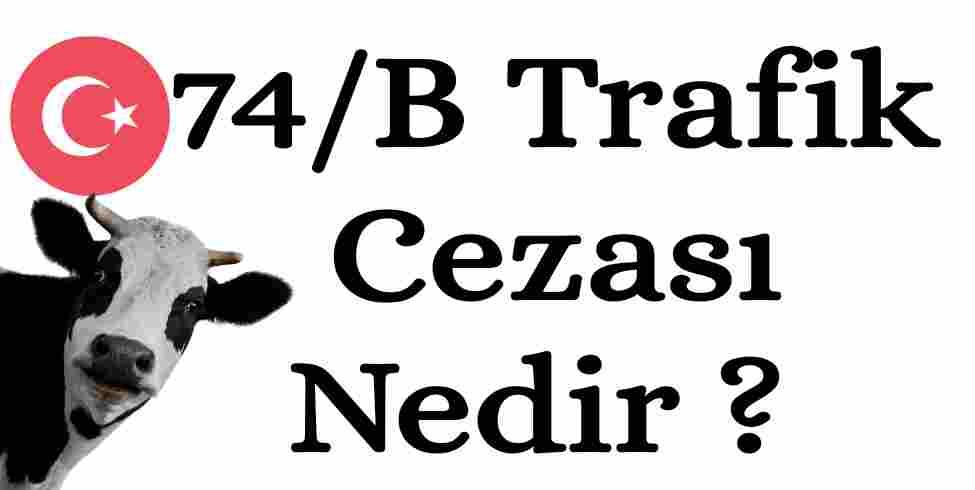 74/B Trafik Cezası