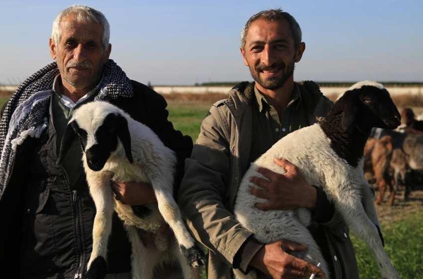 Economic crisis hits animal breeders in Turkey