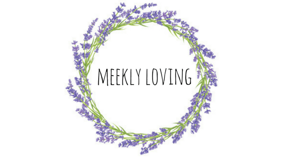 Meekly Loving by Sydney Meek