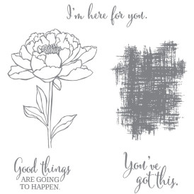 You've Got This Stamp Set