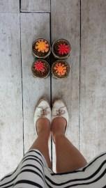 Meet my beautiful cacti