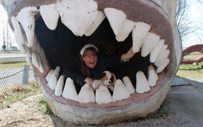 Me in a shark's mouth