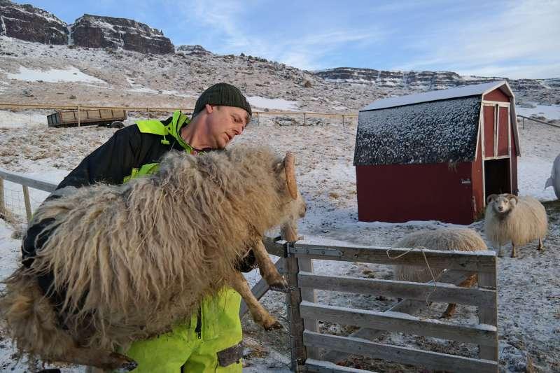 Jóhann mit Schaf