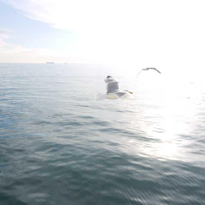 Über dem Meer