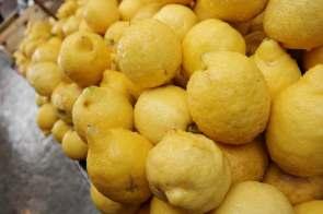 Wo die Zitronen nass sind.