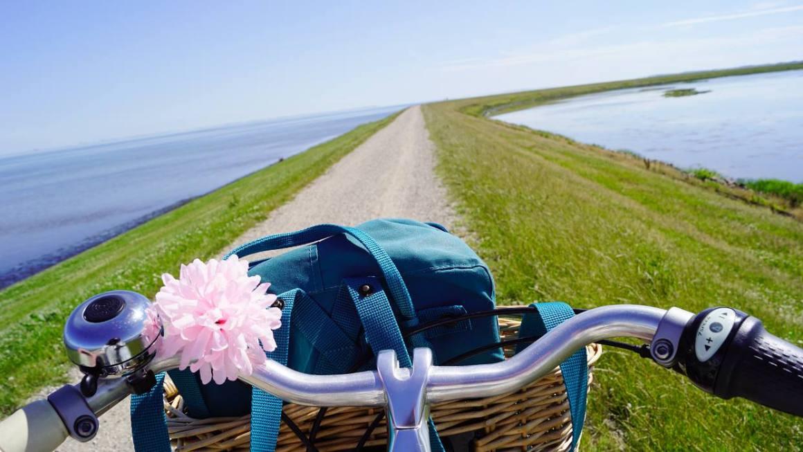 Reizen met de fiets