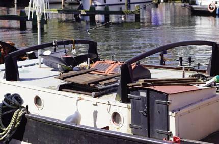 Die Boots-Gans