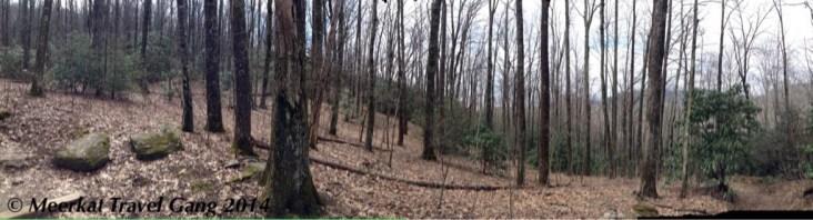 Montreat Black Mountain Hiking trail