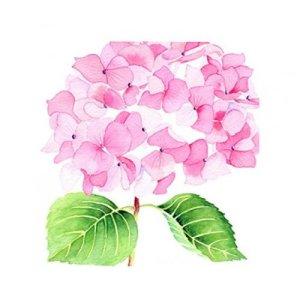Servetten bloemenprent rosé 25x25
