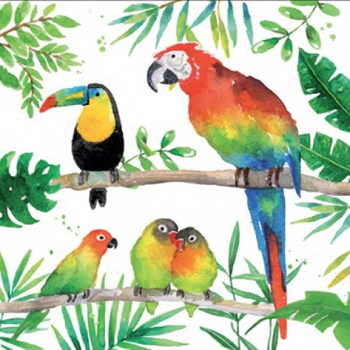Servetten tropical birds 33x33