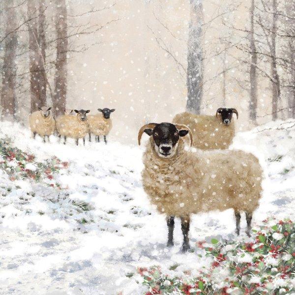Servetten Highland Sheep 33x33