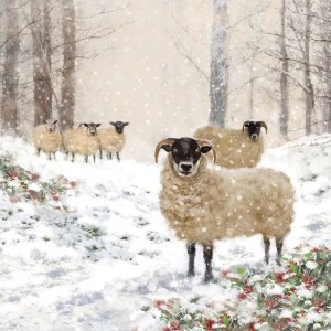 Servetten Highland Sheep 33x33