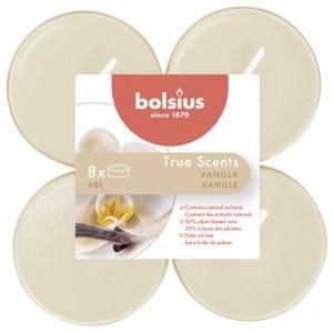 Geurtheelichtjes true scents vanille crème 8x8uur