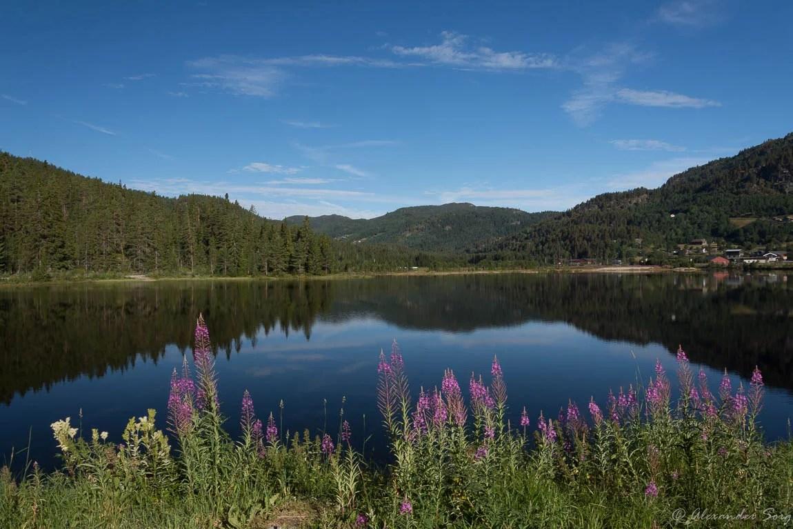Blick über einen klaren See in Norwegen
