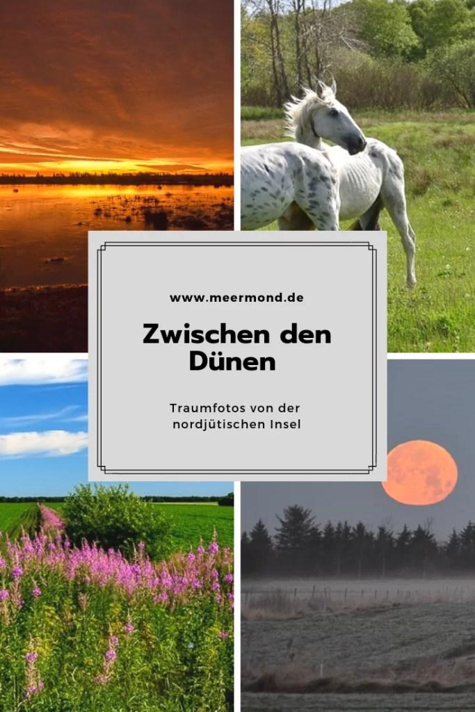 Dänemark Landschaften Meermond
