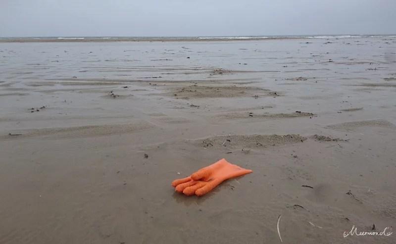 Müll Strand Dänemark Plastik