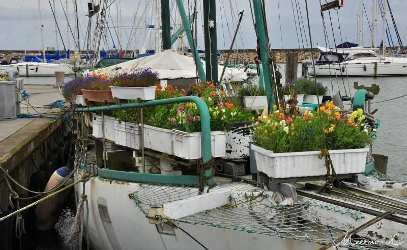 Schiff Sæby Hafen Sommer