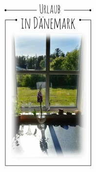 Urlaub in Dänemark Fenster Ferienhaus