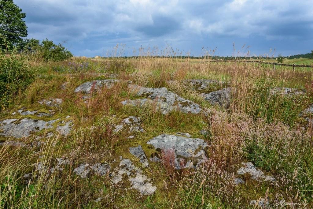 Schweden Landschaft felsig