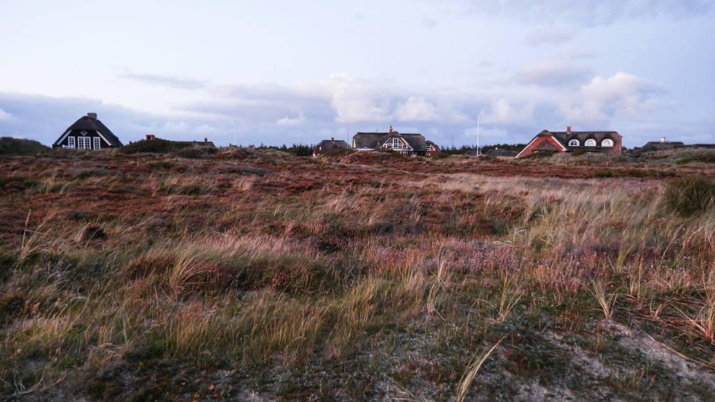 Ferienhäuser in Blåvand