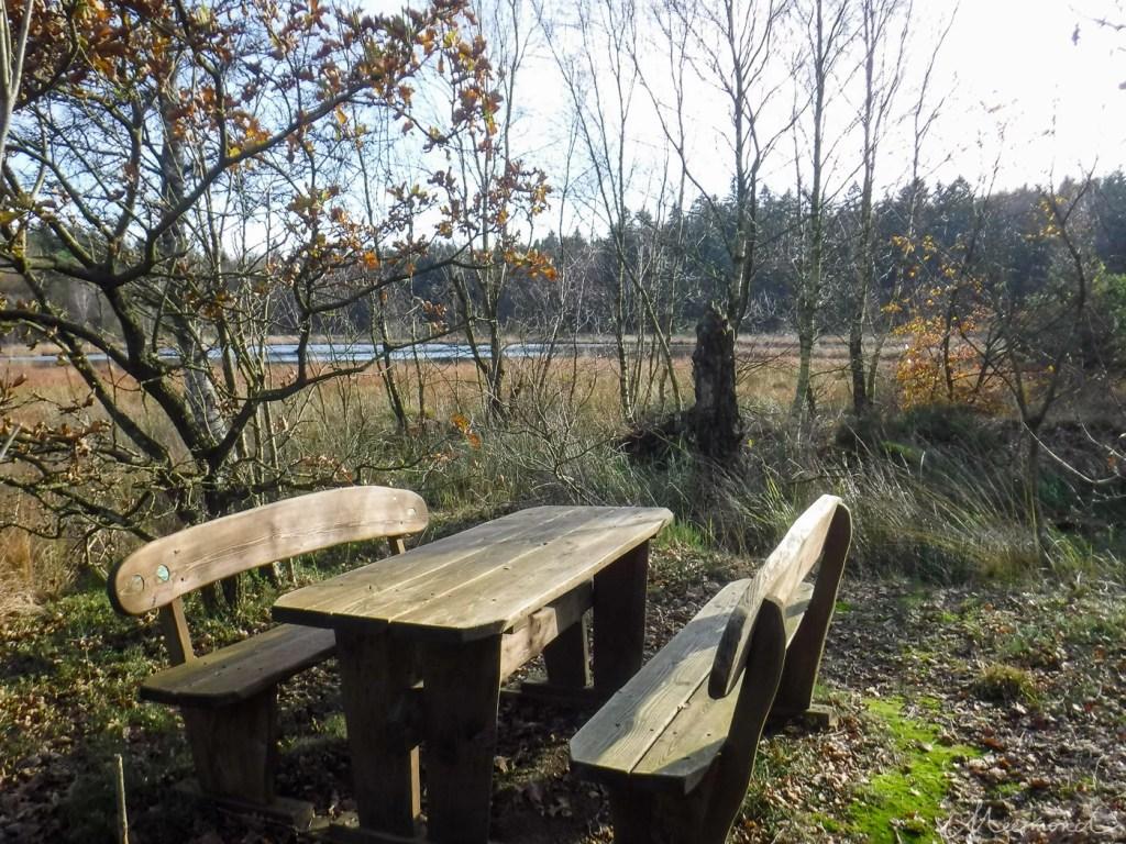 Picknicktisch in Dänemark