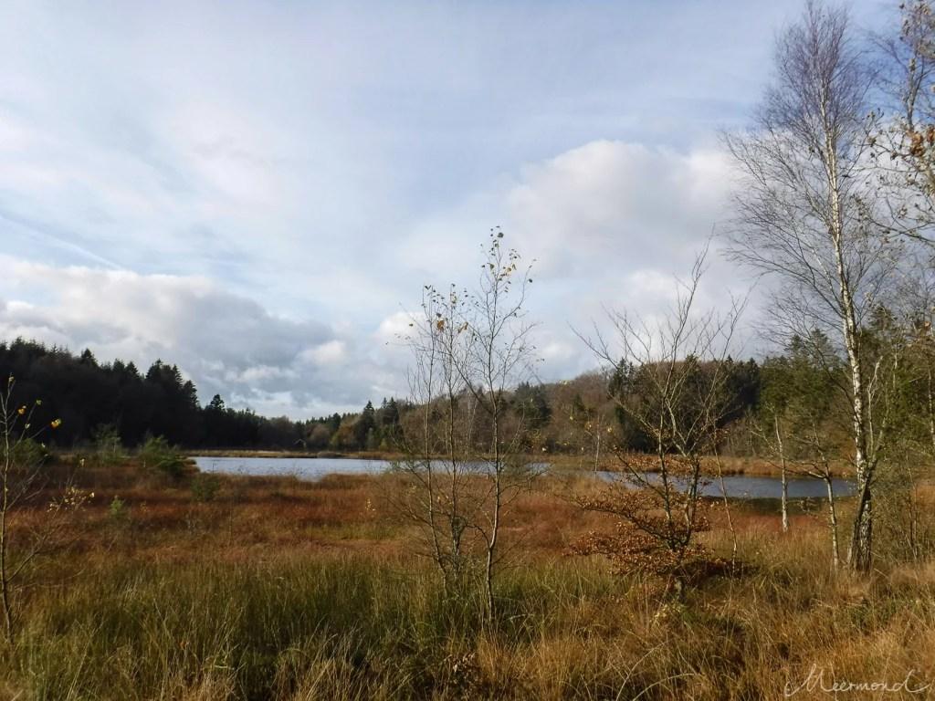 See im Herbst Dänemark