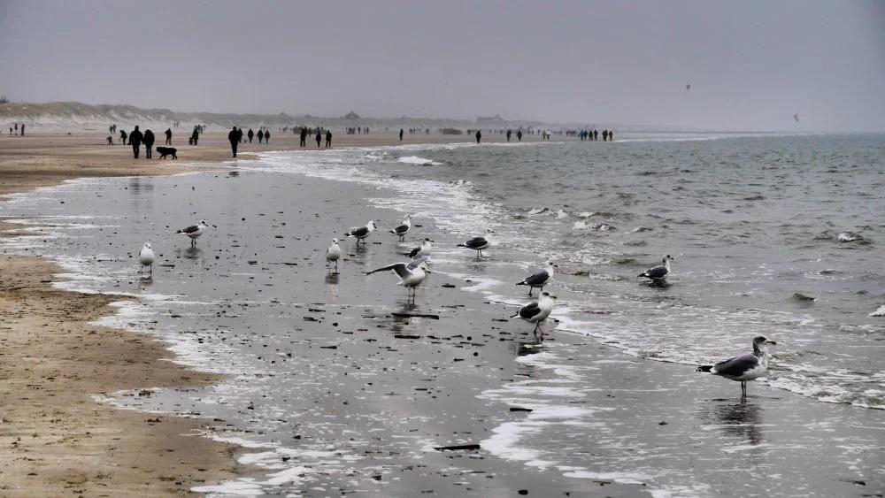 Blåvand Strand im Winter