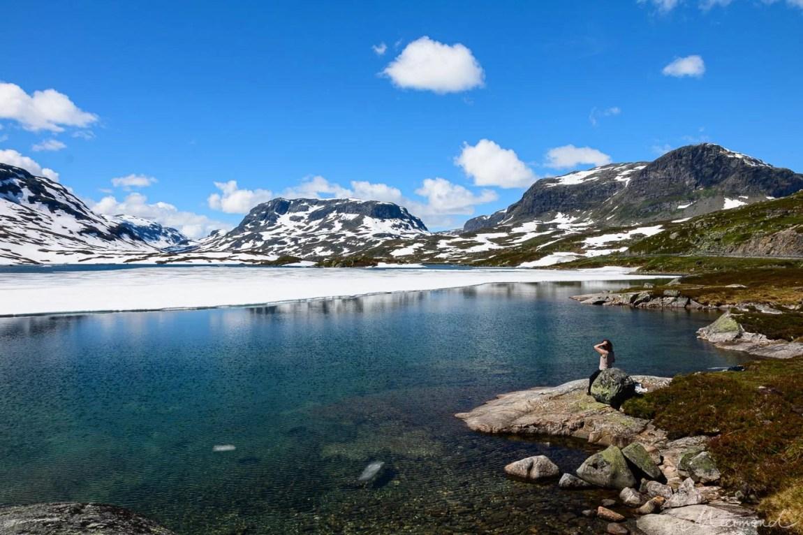 Norwegen Haukelifjell Eis Marion