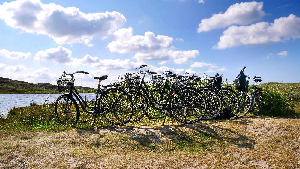 Auf dem Fahrradurlaub in Dänemark: viele Räder vor dänischer Landschaft