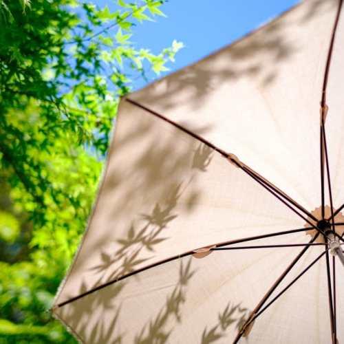 Waarom de Parasol een aanwinst is voor in de tuin