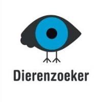 Dierenclub Nederland, Dierenzoeker