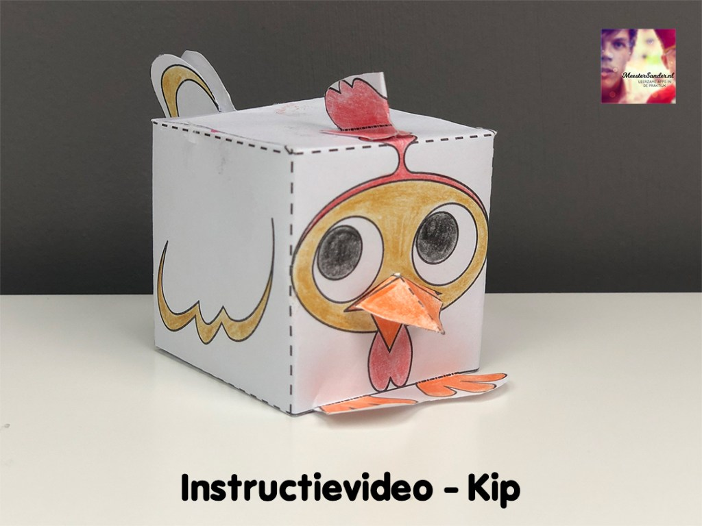 instructievideo Kip