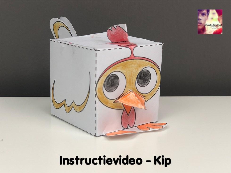 instructievideo Kip
