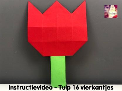 instructievideo Tulp 16 vierkantjes vouwen