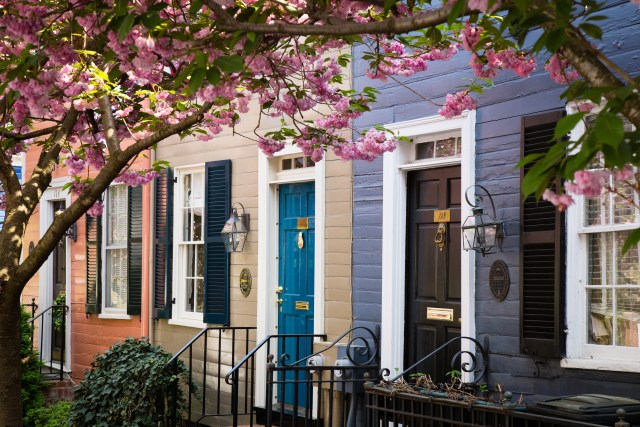 Top 12 Reasons to Visit Alexandria This Spring