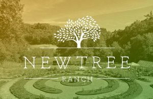 NewTree Ranch Debuts Unparalleled Experiences and Retreats
